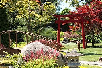 japanese-garden-web.jpg
