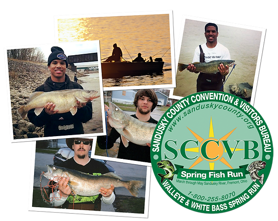 fishing-collage.png