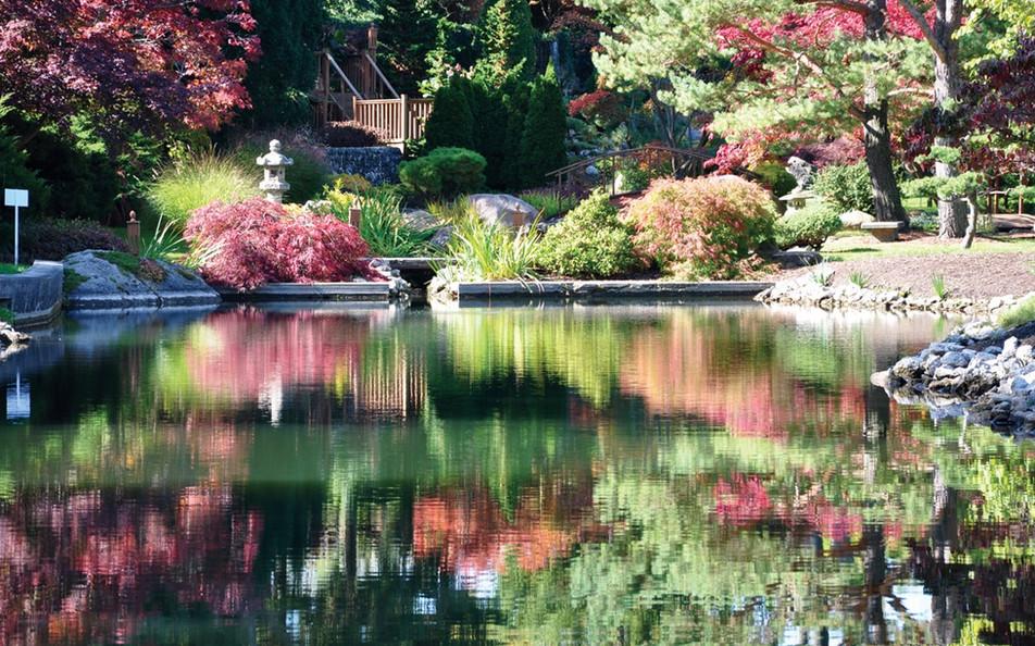 japanese-garden-ii_orig.jpg