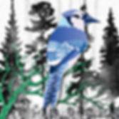 PNW Birdsof a Feather-1.jpg