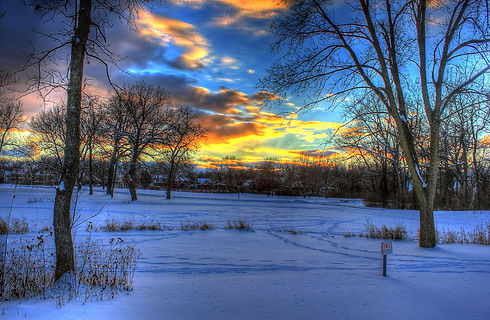 1280px-Gfp-wisconsin-madison-a-winter-su
