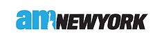 amNY logo