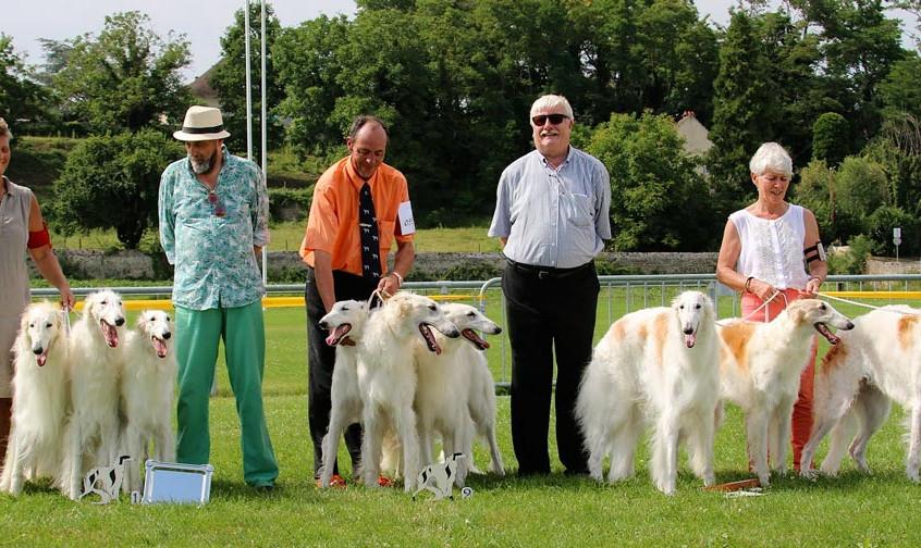 Lot d'Elevage du Cot-Regnier (à droite) 3e prix