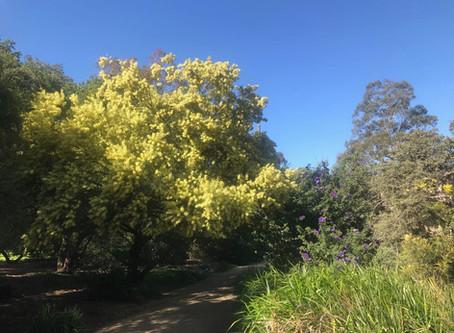 Flaubert, Spring and a Poem