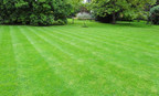 Stratford, CT   Best Lawn Care Company Near Me   Commercial Property Maintenance Services