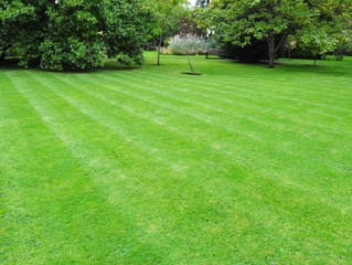 Stratford, CT Spring Landscaping Services - Lawn Care & Spring Cleanup in Stratford