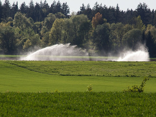 Landscape Irrigation & Drainage Installations and Repairs | Stratford, CT