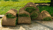 Lawn Renovation & Installation, Sod Lawns, Seed Lawns, Aerate Thatch | Stratford, CT