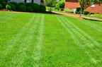 Stratford, CT | Fertilizing Lawn Care Services Near Me | Lawn Mowing | Weed Control in Stratford