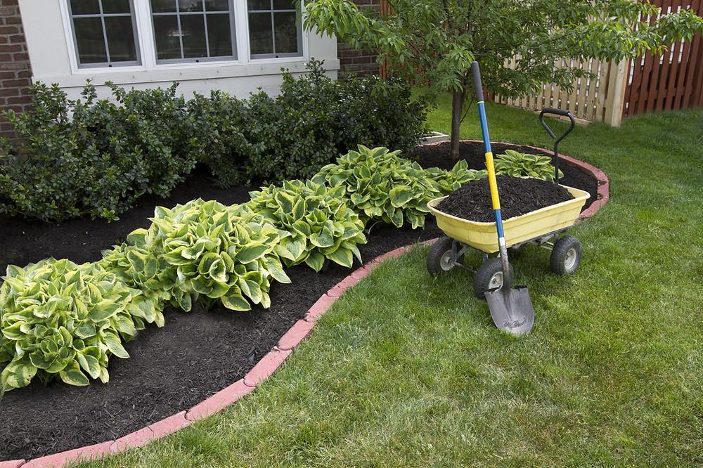 Stratford Ct Tree Plants Shrub Plantings Mulching Service Landscape Design Near Me