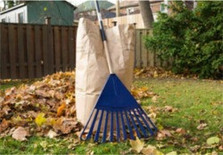 Winter Preparation Tips for Your Lawn | Stratfrod, CT