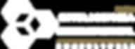Logo IO 2020.png