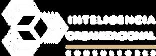 Logo IO 2020 Master 1 pto.png
