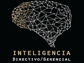 Inteligencia Directivo / Gerencial