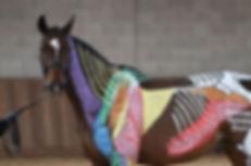 Horses inside out.jpg
