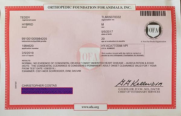 Teddy OFA Heart Certificate.jpg