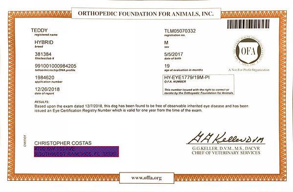 Teddy OFA Eyes Certificate.jpg