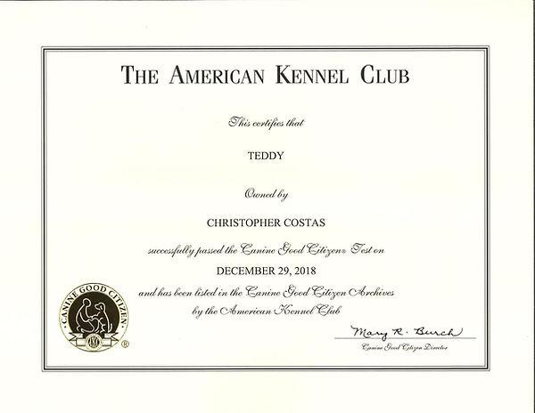 Teddy AKC Canine Good Citizen Award.jpg