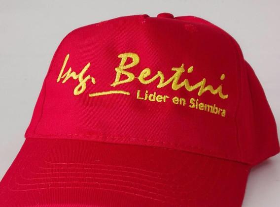 Bertini gorra.jpg
