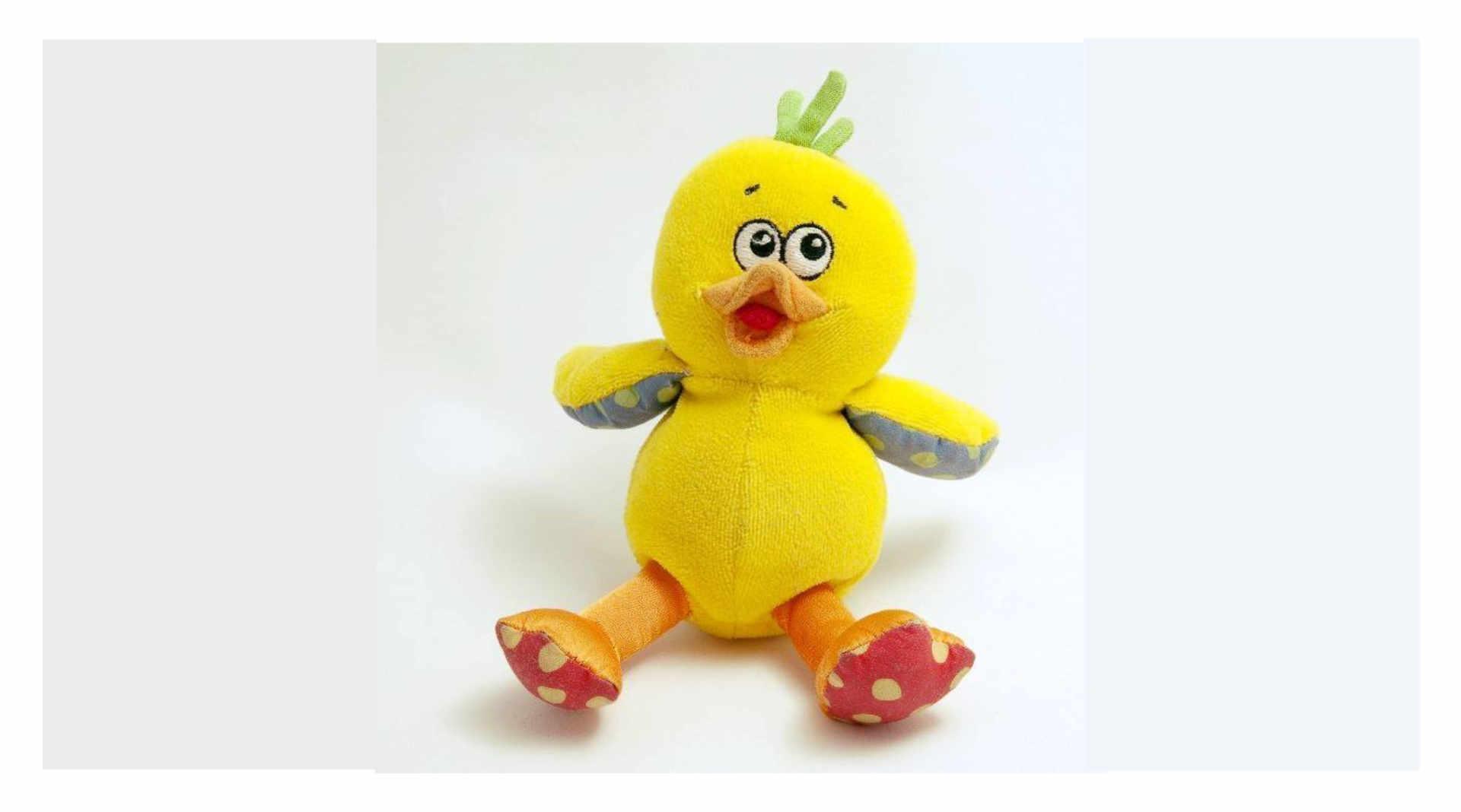 wicky_the duck.jpg