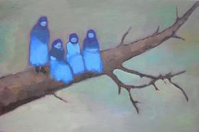 Bluebirds 2007