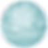 CCMM Round Snowflake copy.png
