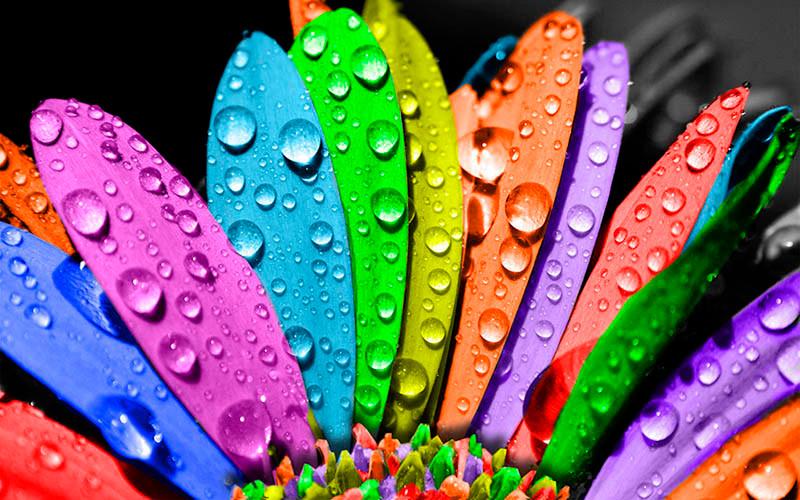 importancia significado das cores influencia