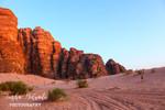 Desert Glows