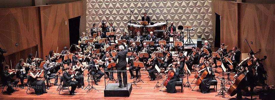 Brahms-4a-curso-internacional-de-regenci