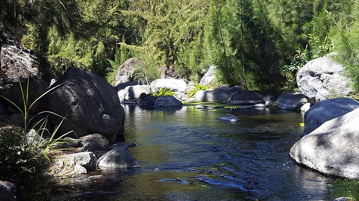 Cascades Chutes et bassins ile de la Réunion