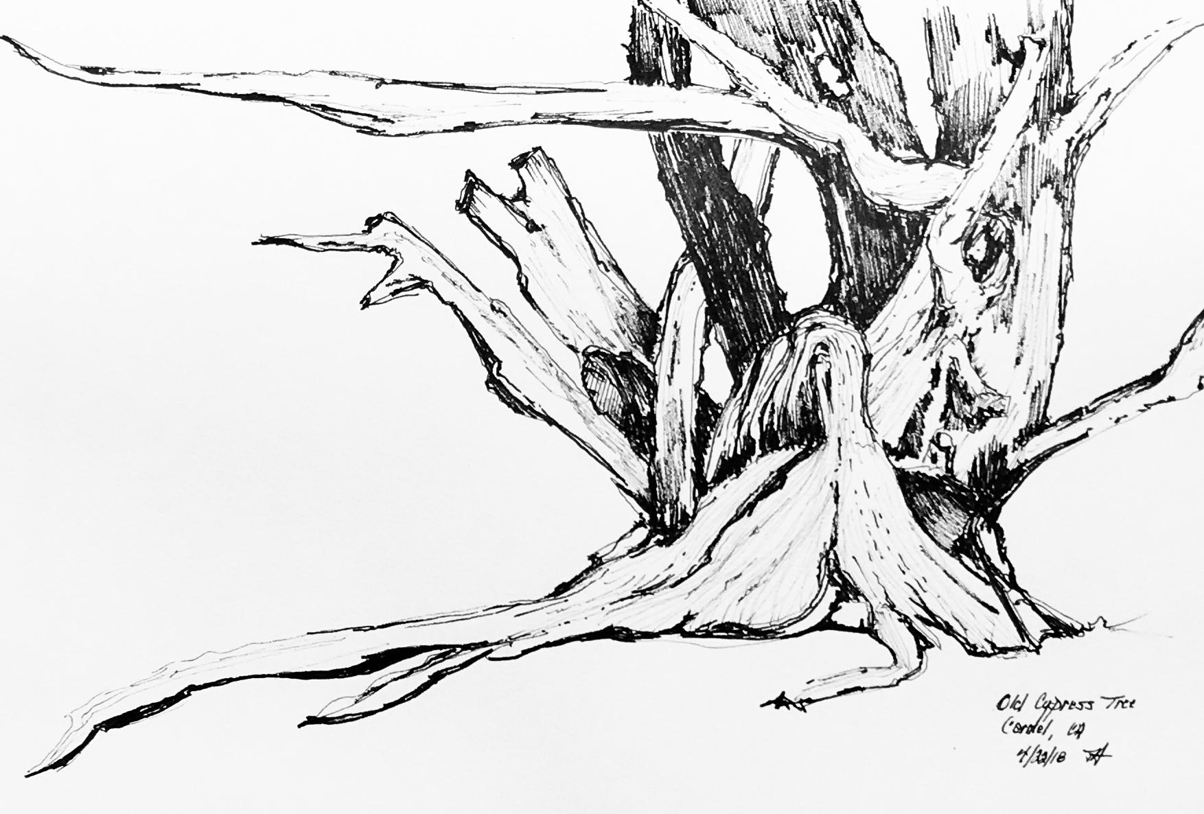 Carmel Tree