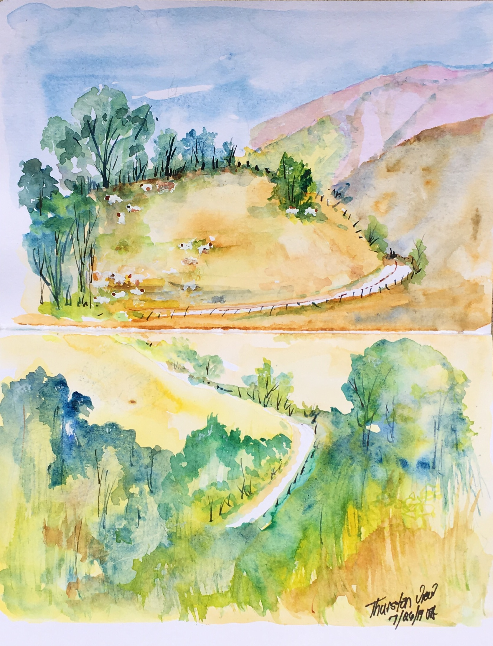 Thurston View