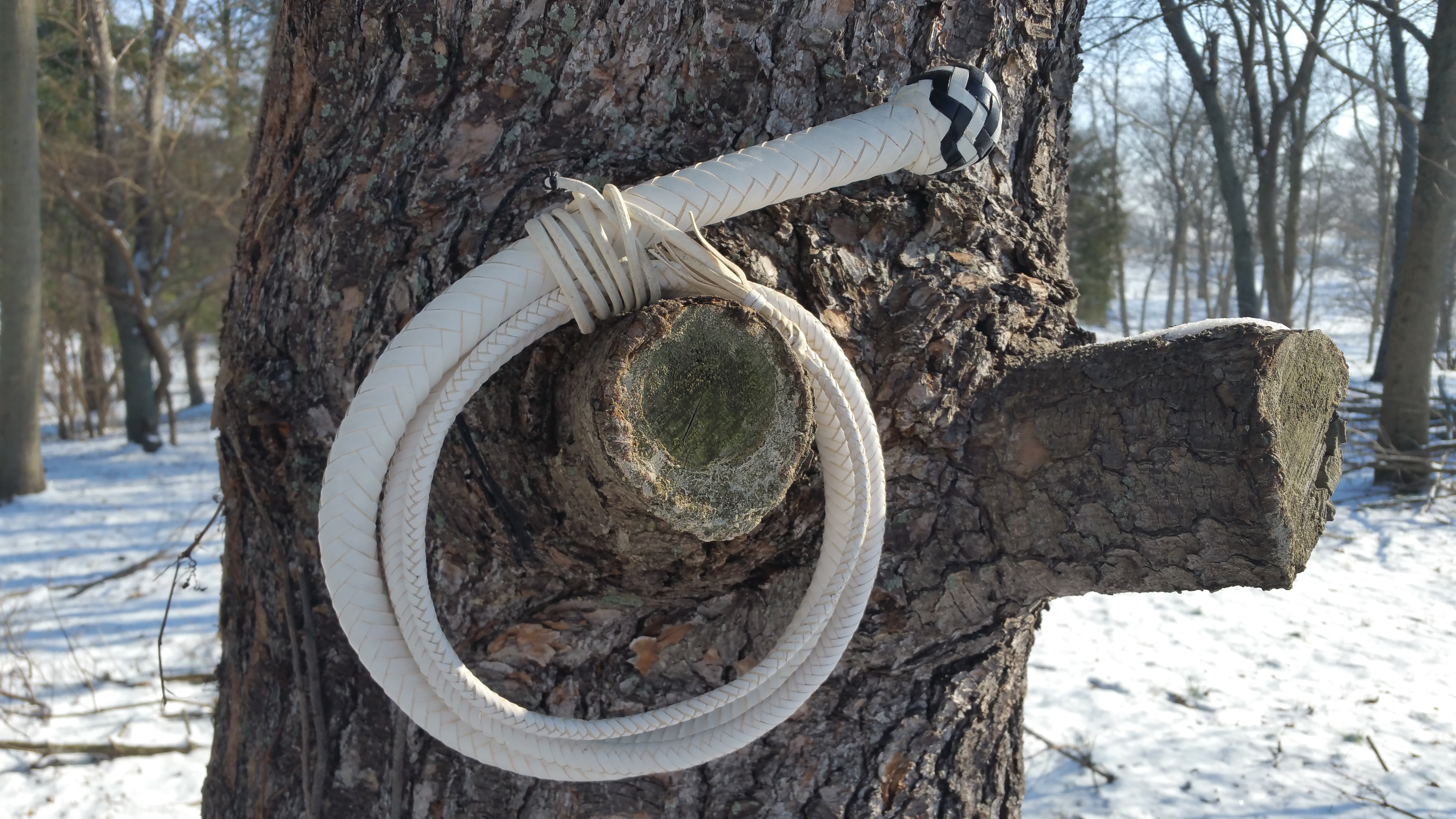 6' 12 Plait Snakewhip