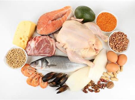 Gros plan sur les protéines