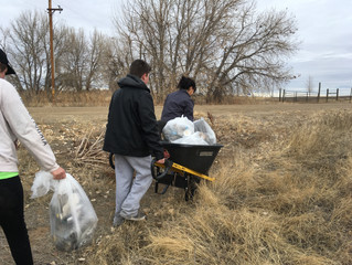 LOCAL SERVICE PROJECT: BIRD CONSERVANCY AT BARR LAKE