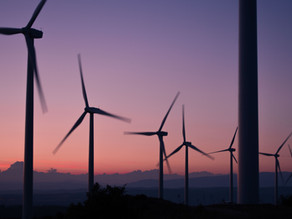 Which Green Energy Alternative is the Most Economically Viable?
