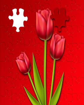 tulips-3158922_1920 (2).png