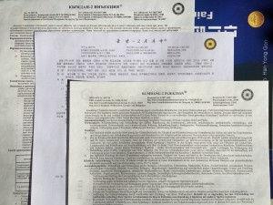 инструкция кымдан-2 в украине