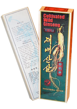 Cultivated wild ginseng D P R Korea