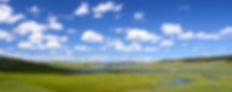 hayden-valley-yellowstone-valley-landsca