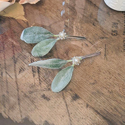 Eucalyptus Pearl