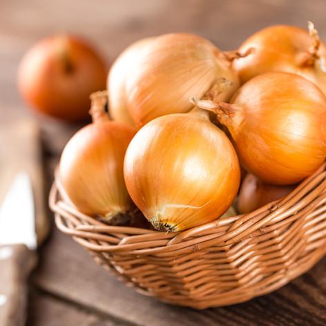 Onion Germination Information