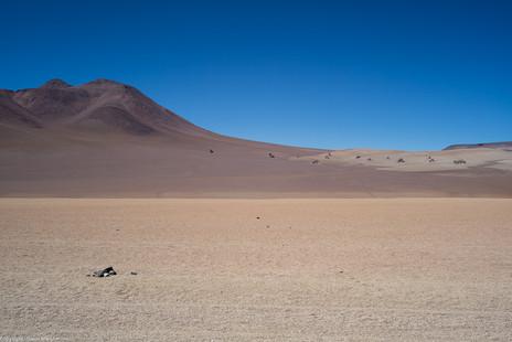 Dalì Desert