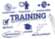 homepage-training-image.jpg