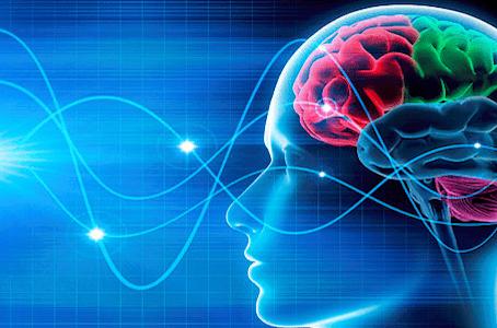 What is Neuroplasticity? A Psychologist Explains.