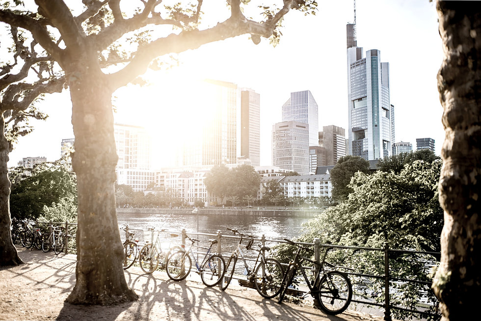 Sunset%20in%20Frankfurt_edited.jpg