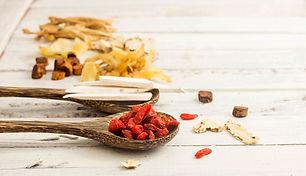 Goji berry and chinese medicine on white