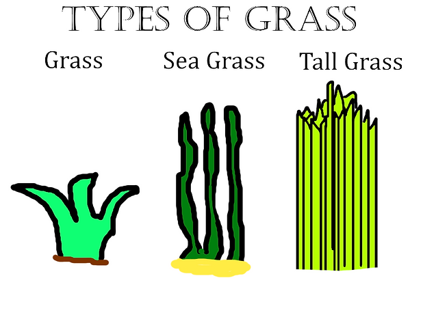 Han Grass (Submission for Best Art).png
