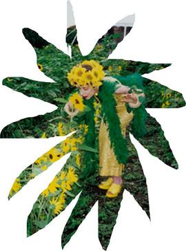 PageImage-507881-4730863-sunflowergirlIa