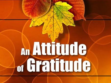 Forging an Attitude of Gratitude